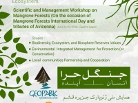Qeshm Island Geopark National Conference on Mangrove Forest Ecosystem